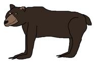 Brutus the Bear