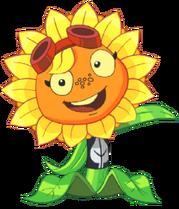 Solar Flare-0