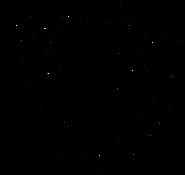 Warner Bros. Parks and Resorts logo print