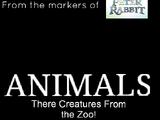 Animals (2019) Live Action
