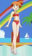 Misty Red Bikini