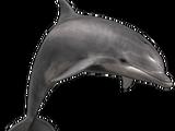 Zoo Tycoon 3: Going Underwater
