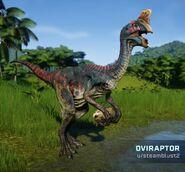 JWE Oviraptor