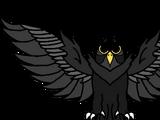 Dark Owl