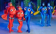 Finding Dory on Ice