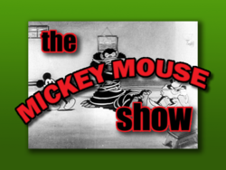 The mickey mouse show