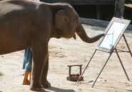 Ruby the painting elephant