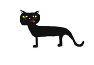 Tyler the Cat