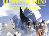 Homeward Bound III: Running with the Wolves