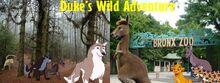 Duke's Wild Adventure