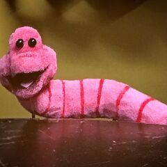 Pinky the Worm