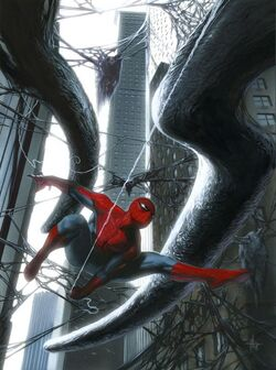 Web of shoadws