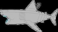 Mechanical great white shark pose 1a