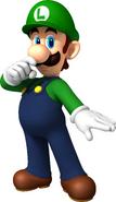 MSOSG Luigi