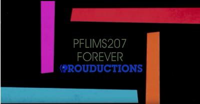 Pflims207 logo