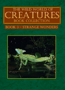 Book 3 - Strange Wonders Book Cover V2