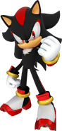Shadow The H