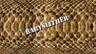 Babyslither title card