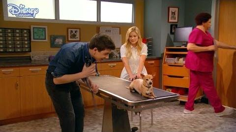 I Didn't Do It The Checkup Official Disney Channel UK