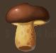 Veggies mushroom