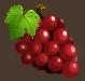 Fruits grapesred