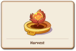 Holy Relic of Harvest