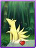 Nine Tail
