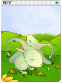 Petite (Ground)-card