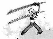 Perser swords