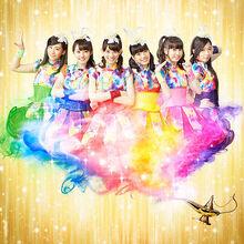Team-syachihoko