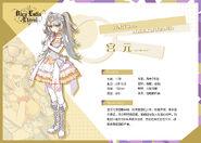 Yuan idol summary