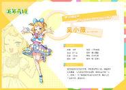 Xiaowei idol summary