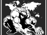 Titan Wrestling Entertainment