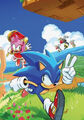 Sonic 2 Virgin Cover