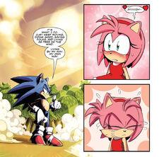Amy admires Sonic