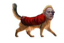 Felinid Ambassador