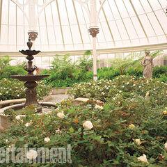 Różany ogród prezydenta Snowa