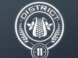 Dystrykt 11