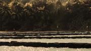 640px-Vlcsnap-2014-03-11-22h51m41s156