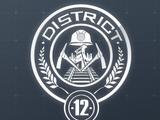 Dystrykt 12
