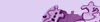 Wbar purple2