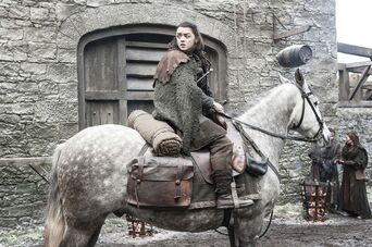 Arya alla locanda