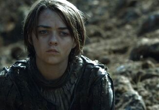 Arya guarda il Mastino morente