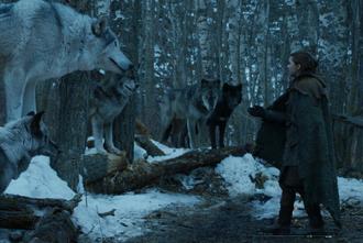 Arya e Nymeria