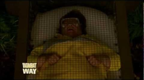 Bed Bugs Immunity Challenge on I'm a Celebrity Get Me Out of Here 2012