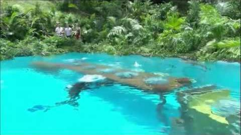 I'm A Celebrity 2012 - Bush Tucker Trial 5 - Come Dive With Me (16 11 2012)