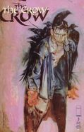 The Crow Vol 1 3