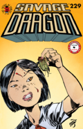 Savage Dragon Vol 1 229