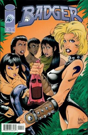 Cover for Badger #11 (1998)
