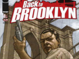 Back to Brooklyn Vol 1